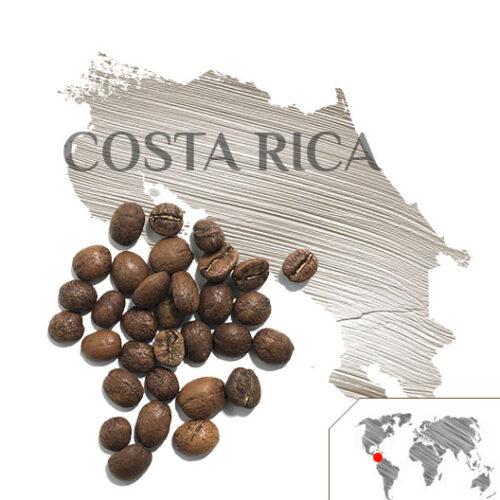 Café Costa Rica Tarrazú, Café Costa Rica, Café Tarrazú, Tienda de Café Málaga