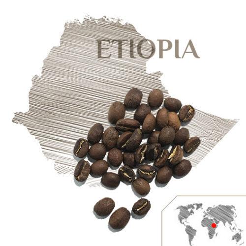 Café Etiopia Moca Sidamo, Café Etiopia, Café Mocca, Tienda de Café Málaga