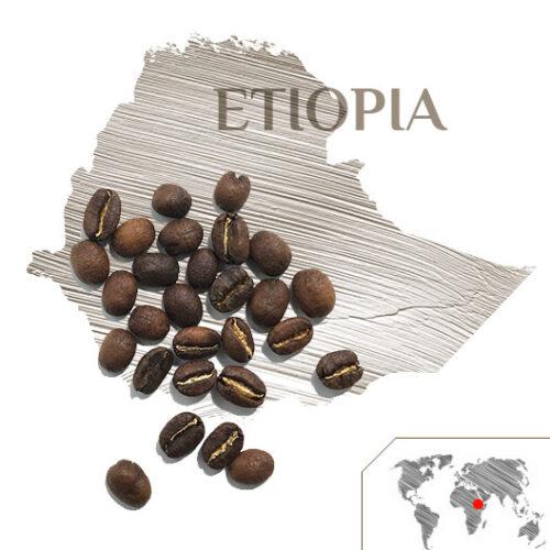 CAFÉ ETIOPÍA YIRGACHEFFE OROMO CITRO, Café Etiopía, Tienda de Café Málaga