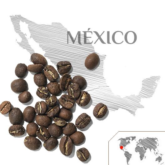 Café México Ara Macao Bio